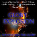 Glory Explosion: Manifesting Glory (15 Teaching CDs) by Joseph Garlington, David Herzog, Ana Mendez Ferrell, Dianne Palmer