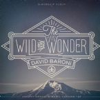 The Wild and The Wonder (MP3 Music Download) by David Baroni