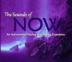 The Sounds of Now (MP3 music download) by Identity Network and Jeremy Lopez